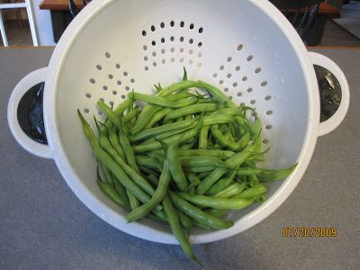 Tips on Growing Green Beans