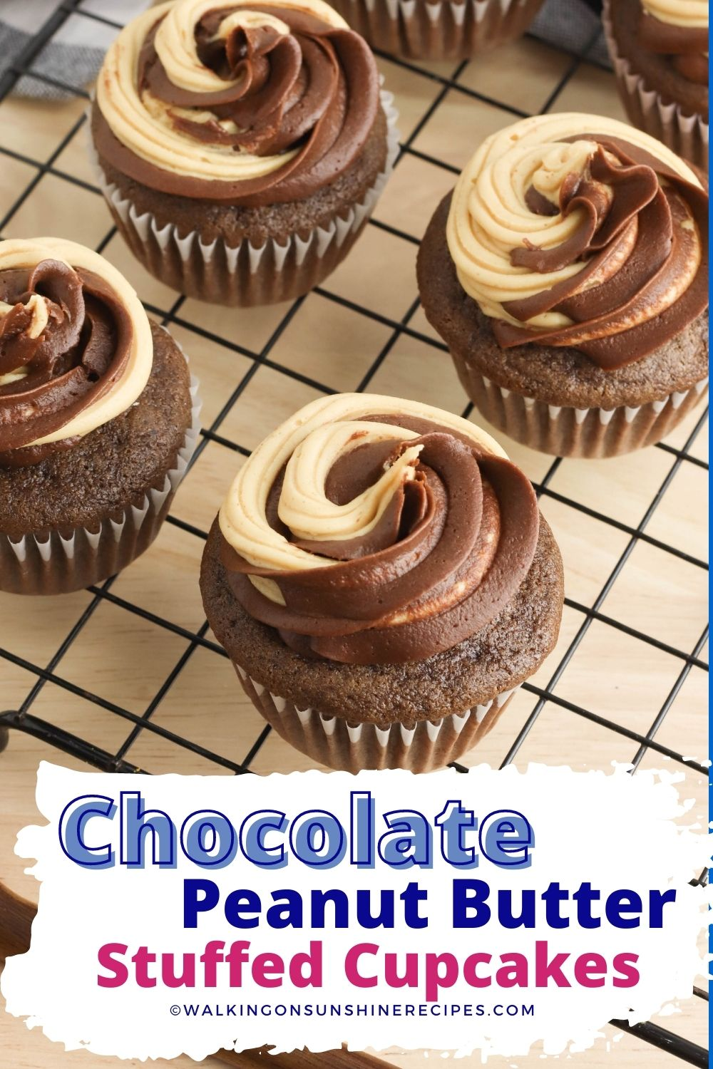 chocolate peanut butter cupcakes with peanut butter filling.