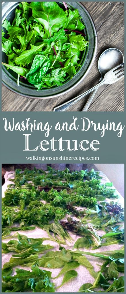 A great tip on washing and drying lettuce freshly picked from the garden on Walking on Sunshine.