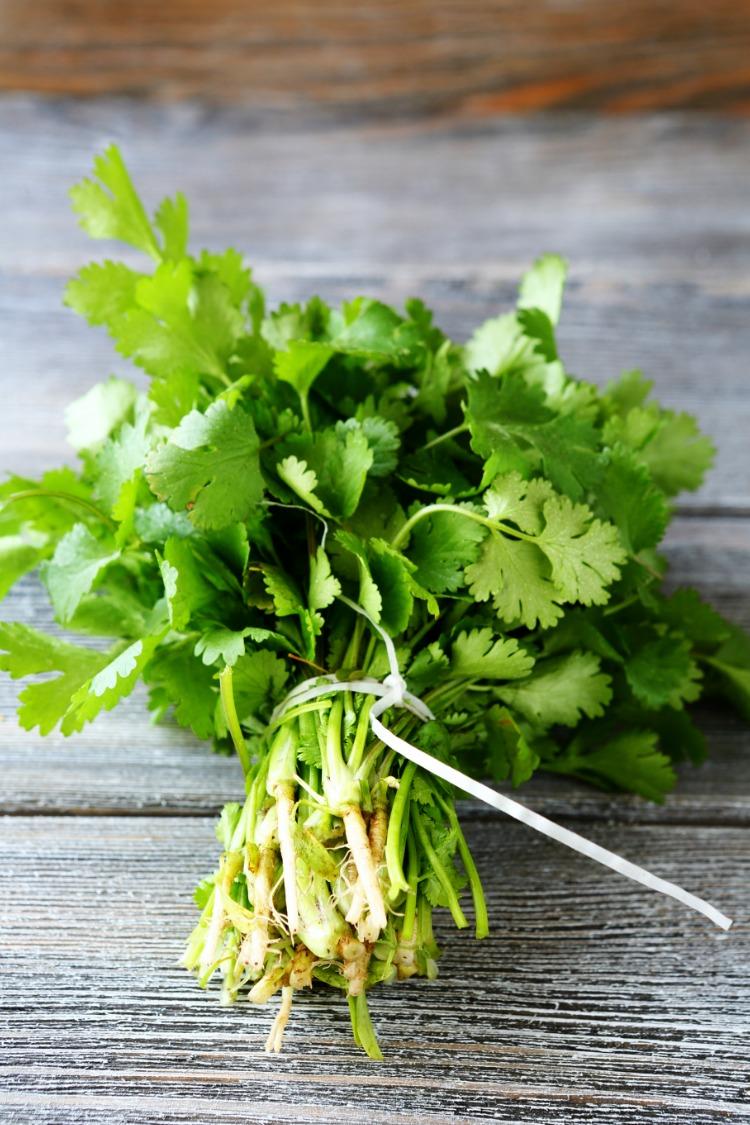 Fresh parsley on cutting board tied.