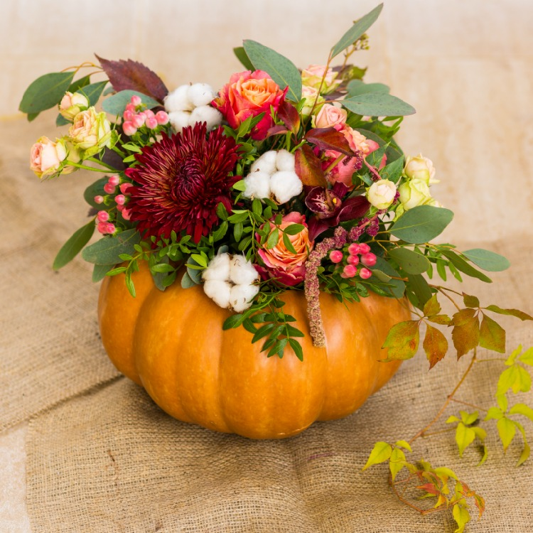 Pumpkin Thanksgiving Centerpiece from WOS