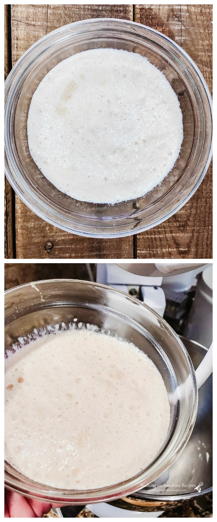 Proofed yeast for Homemade Cinnamon Rolls