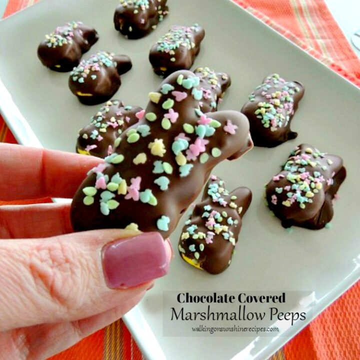 Chocolate Covered Marshmallow Peeps