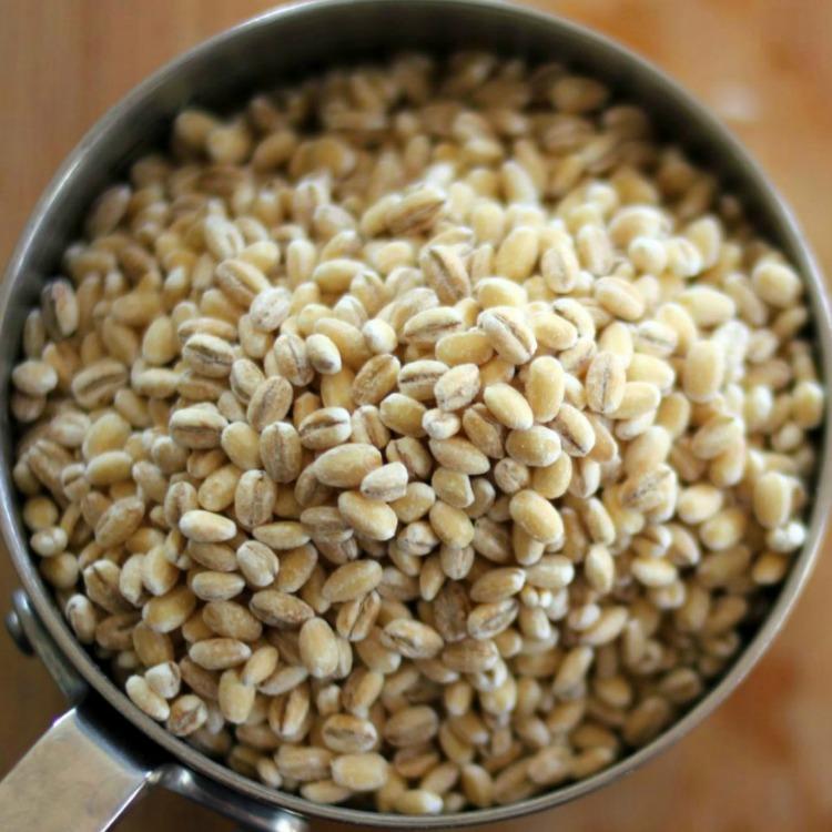 Barley in measuring cup