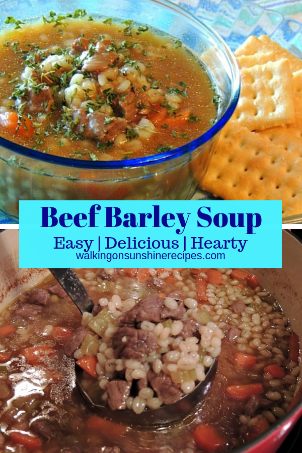 Homemade Beef Barley Soup
