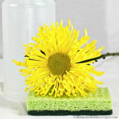 Homemade Household Cleaner