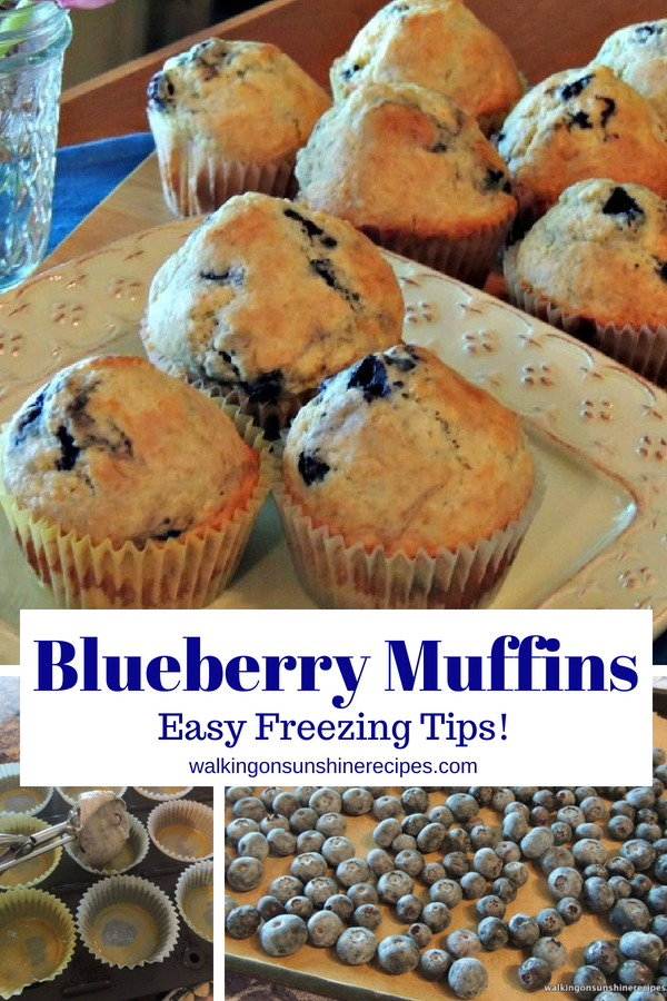 Blueberry Muffins with freezing tips