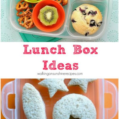 Bento Box Lunches