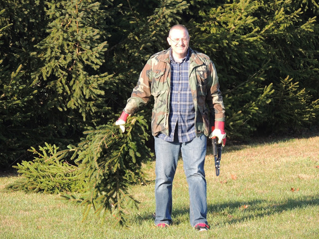 Gathering the branches to make your own Christmas wreath from Walking on Sunshine.