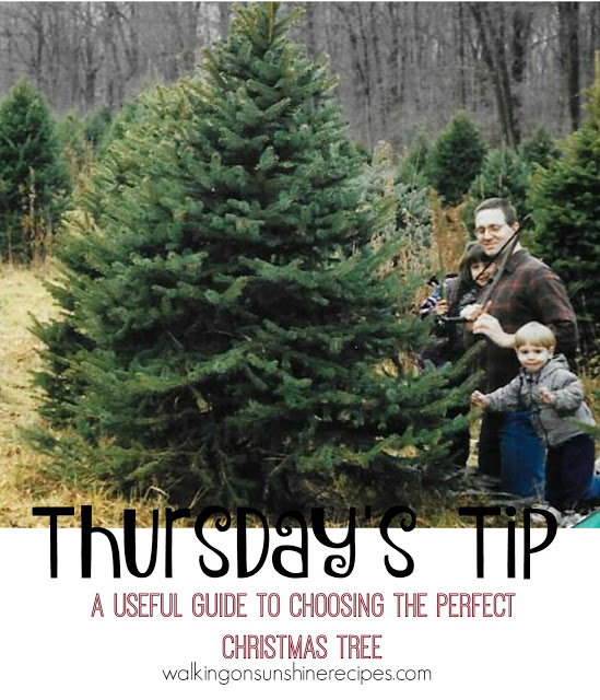 Choosing the perfect Christmas tree is this week's Thursday's tip from Walking on Sunshine Recipes.