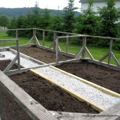 How to Build your First Vegetable Garden