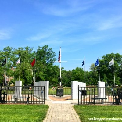 Some Gave All – Memorial Day 2016