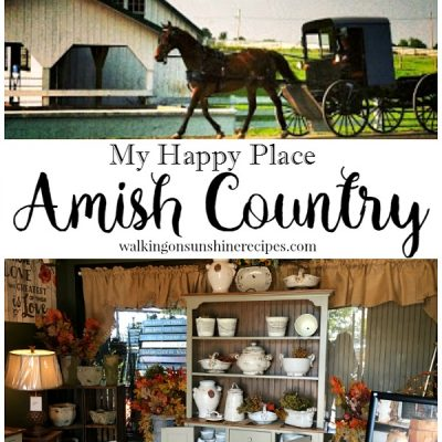 What you Should do When You Visit Amish Country
