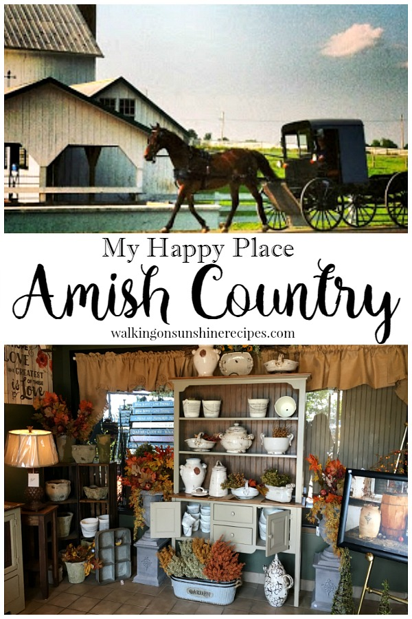 What you should do when you visit Amish Country in Lancaster PA from Walking on Sunshine Recipes.