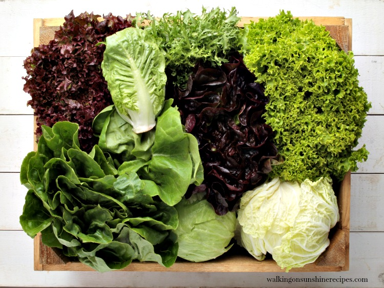 Wooden Bowl full of a Variety of Lettuce from Walking on Sunshine Recipes
