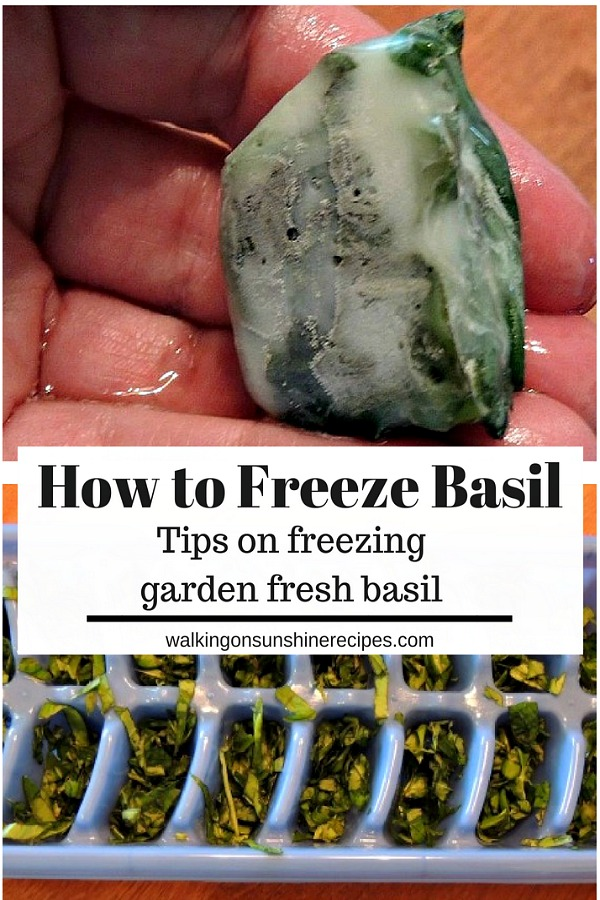 How to Freeze Basil Fresh from the Garden from Walking on Sunshine Recipes