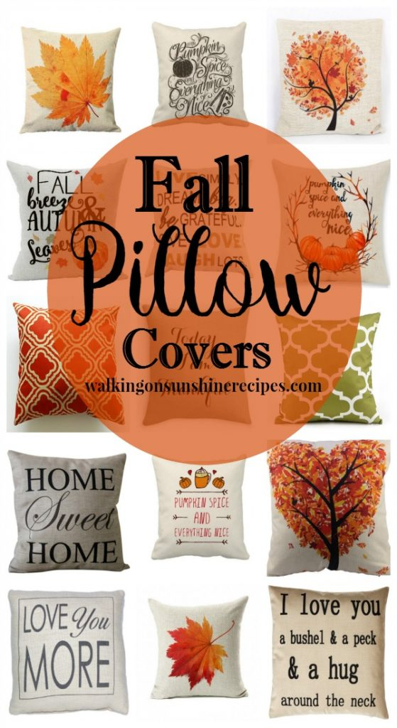 Fall Pillow Covers from Walking on Sunshine Recipes