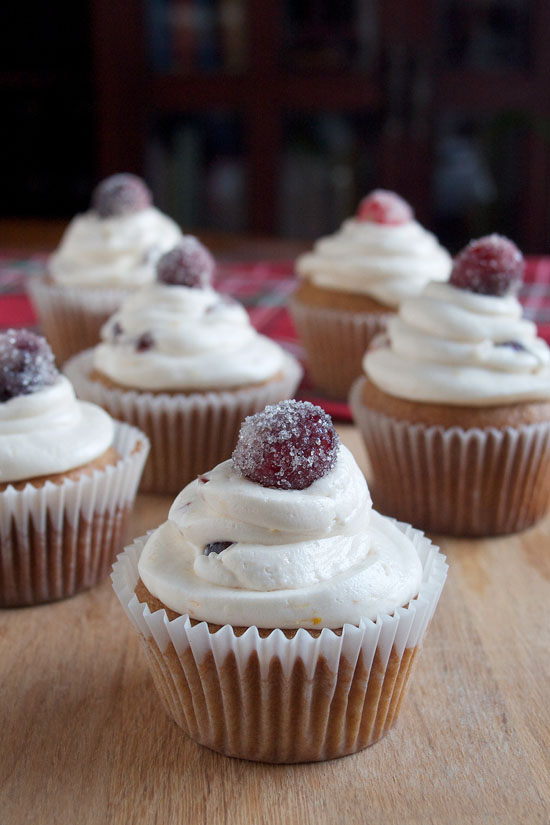 Orange Cranberry Cupcakes from Try Anything Once Culinary