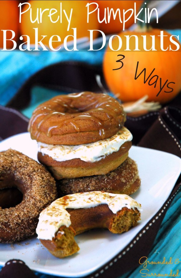 Pumpkin Donuts Baked 3 Ways from Grounded and Surrounded