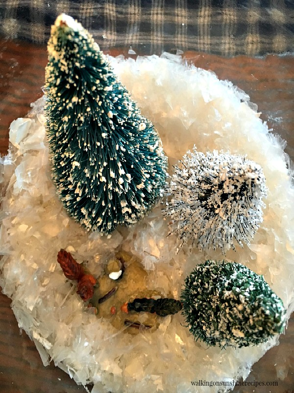 Glass jar terrariums with pine branches make a beautiful centerpiece for Christmas from Walking on Sunshine.