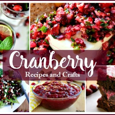 Cranberry Recipes for the Holidays – Party 226