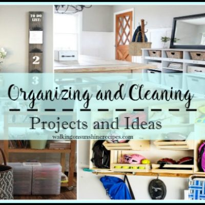 Party:  Organizing Cleaning Projects and Ideas