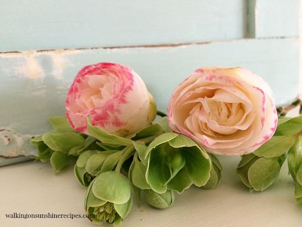 Inspiration: A Bouquet of Thorns - 2 Corinthians 12:8