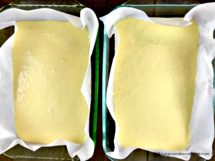 Divide the Cake Batter between two baking dishes