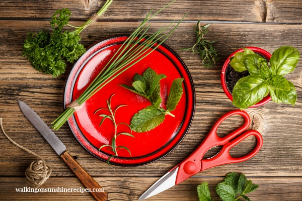 Here are the best herbs to grow for cooking in your garden this year from Walking on Sunshine.