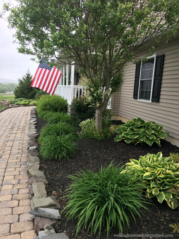 Side Garden Bed with American Flag | Hosta Plants | Walking on Sunshine