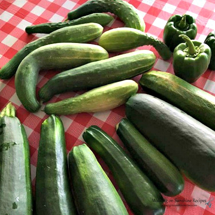 Cucumbers from the Garden 2017