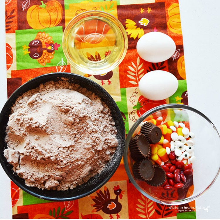 Ingredients for Turkey Brownies from WOS