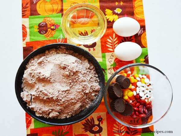Ingredients for Turkey Brownies from Walking on Sunshine Recipes