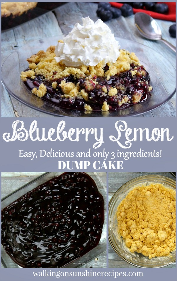 Blueberry Lemon Dump Cake with Video topped with fresh whipped cream.