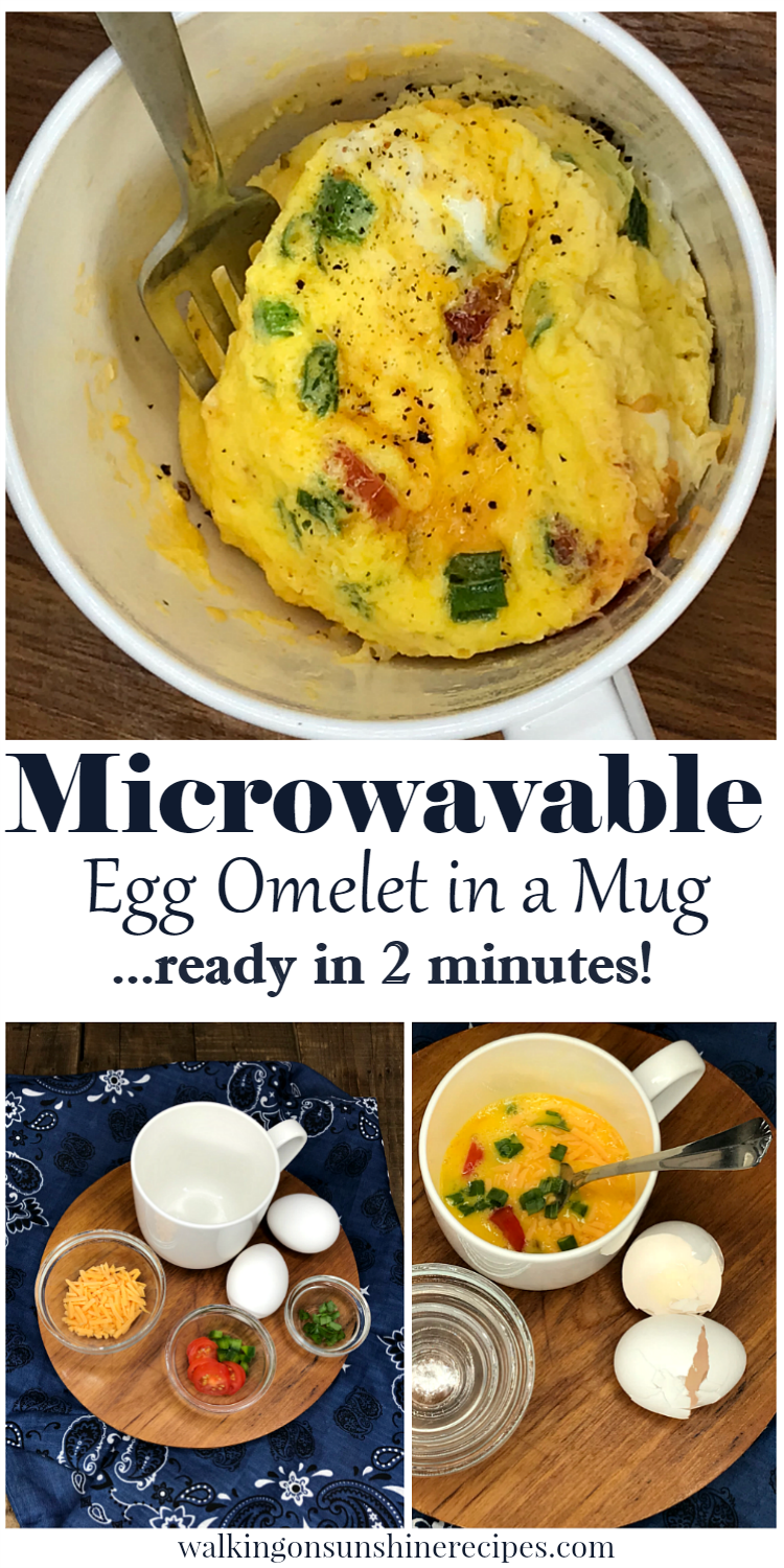 Microwavable Egg Omelet Ready in 2 Minutes