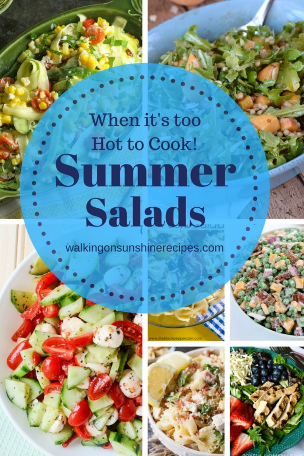 a collection of summer salads.