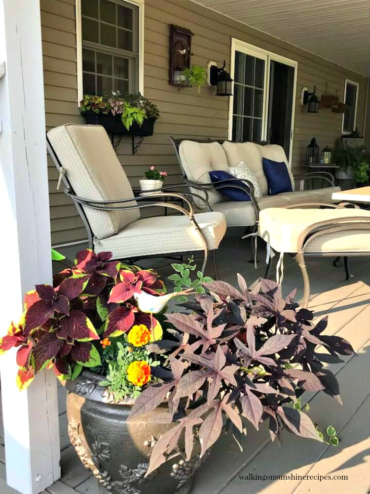 Back porch furniture and planters with flowers.