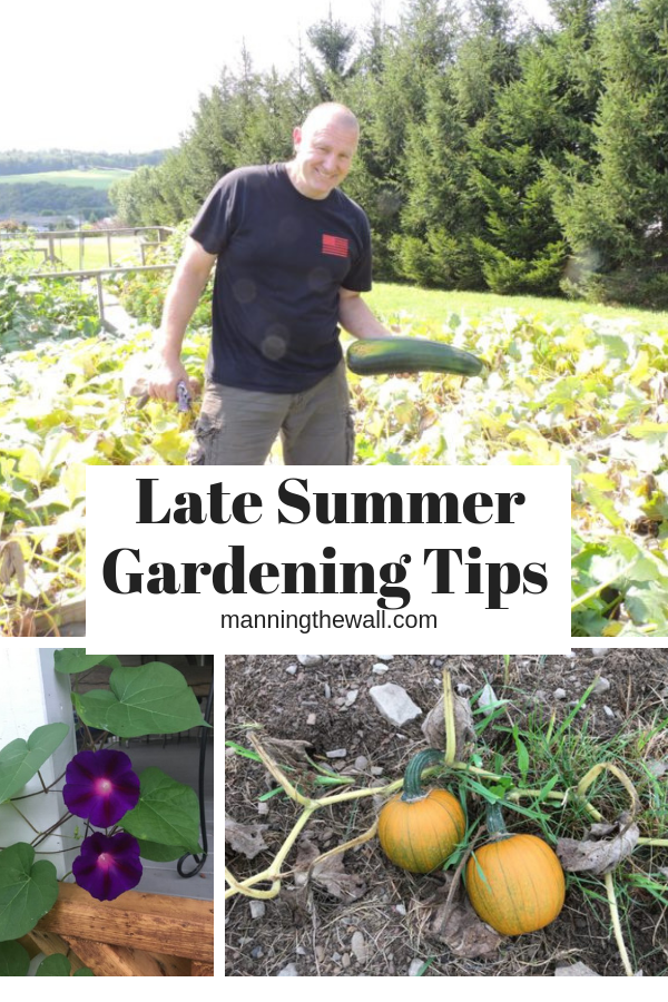 Late Summer Gardening Tips