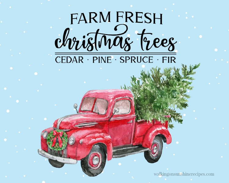Farm Fresh Christmas Trees Blue Snowy Background