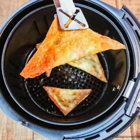 Air Fryer Wontons Appetizer