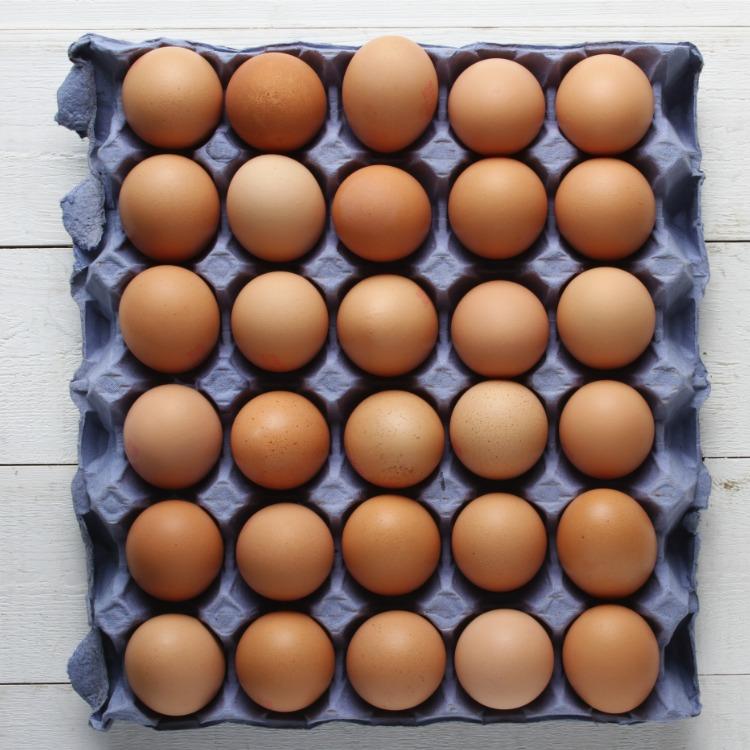 natural brown eggs in carton