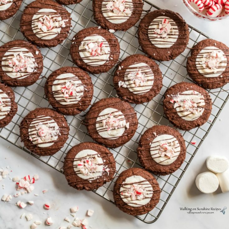 Chocolate Marshmallow Peppermint Cookies