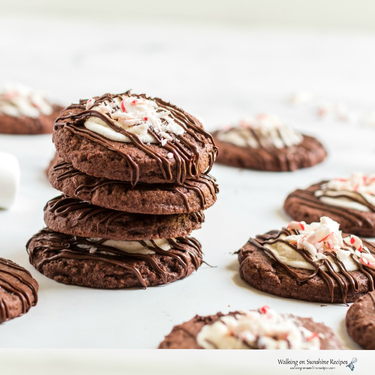 Closeup of Stacked Chocolate Marshmallow Peppermint Cookies