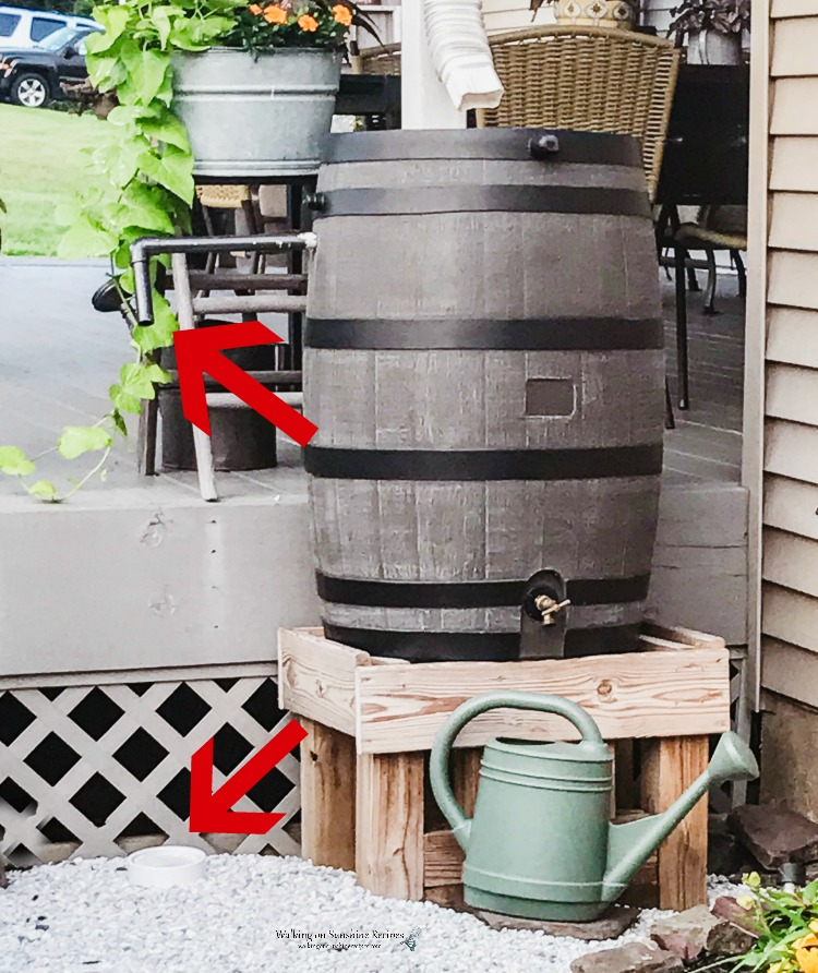 Close up of rain barrel with watering can below.