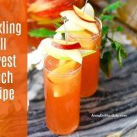 Sparkling Fall Harvest Punch Recipe