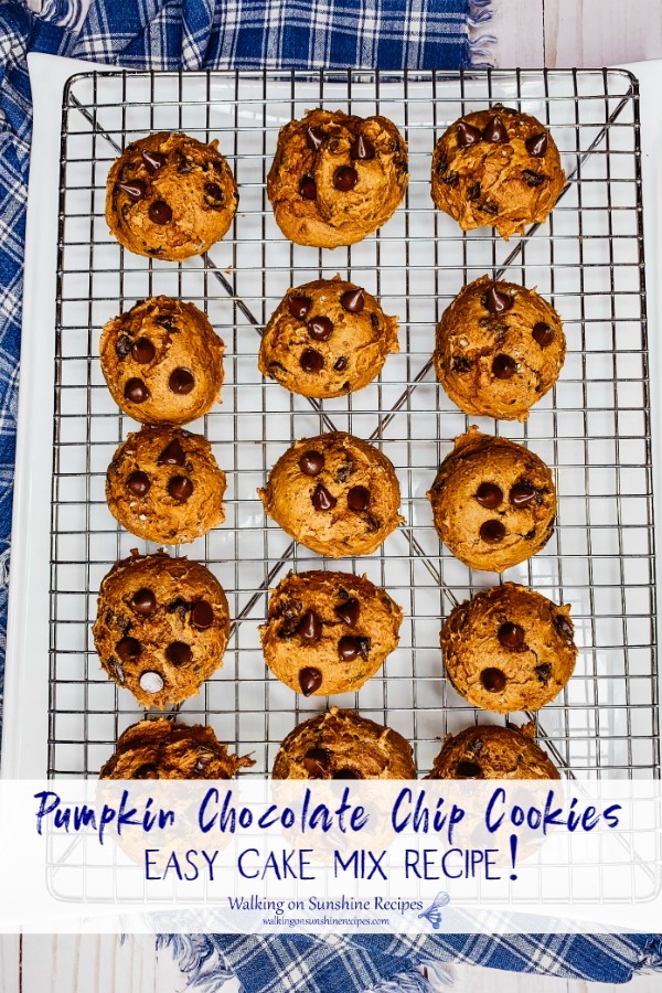 Cake Mix Pumpkin Chocolate Chip Cookies