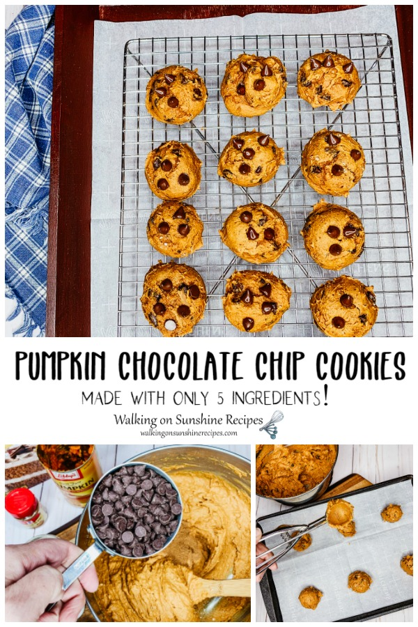 Pumpkin Chocolate Chip Cookies made with only 5 Ingredients from WOS