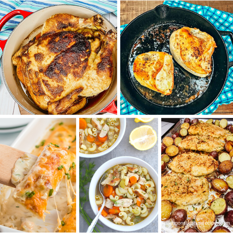 Easy Family Chicken Recipes you can prepare for dinner tonight!