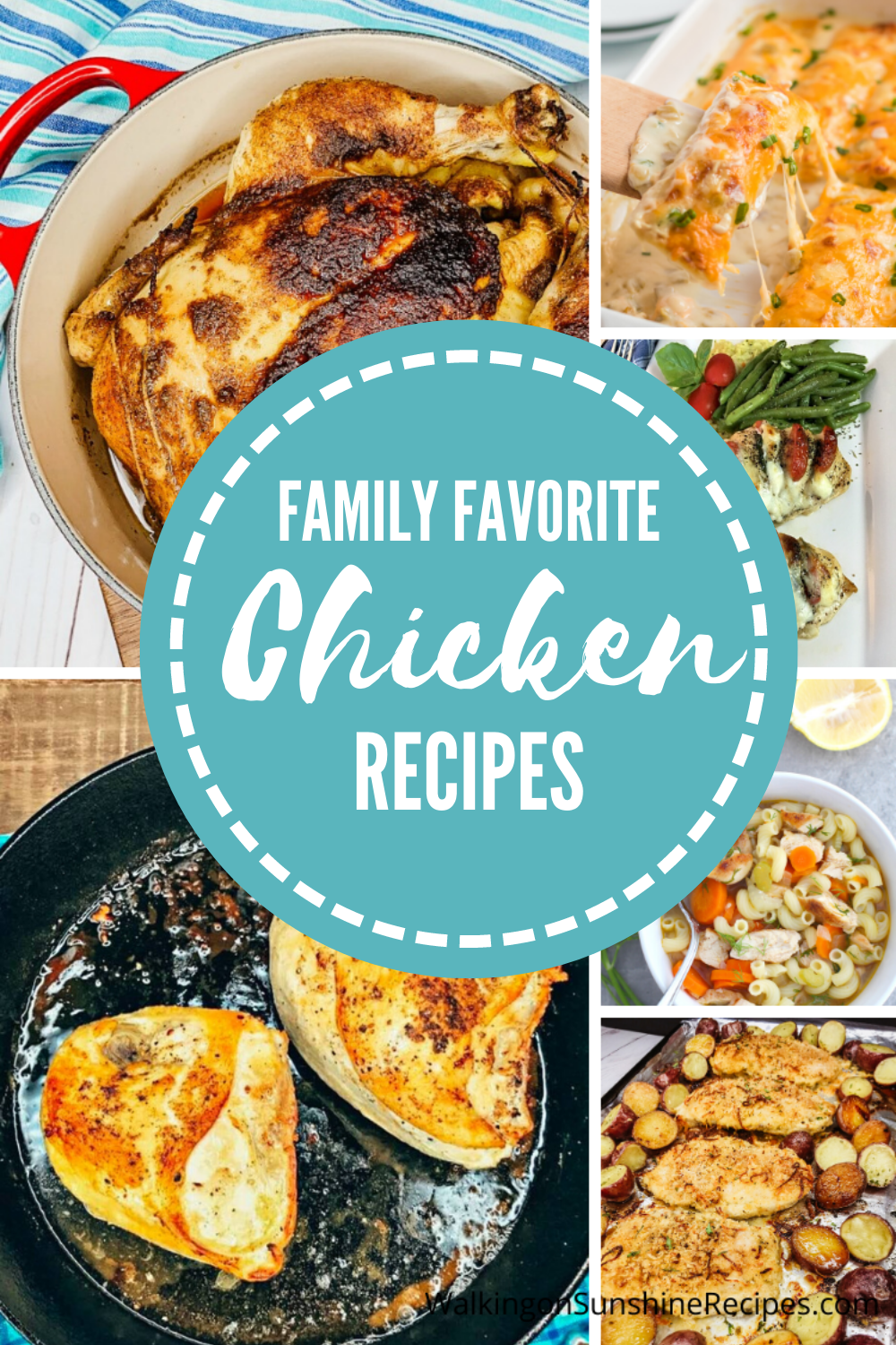collection of chicken recipes perfect for dinner.
