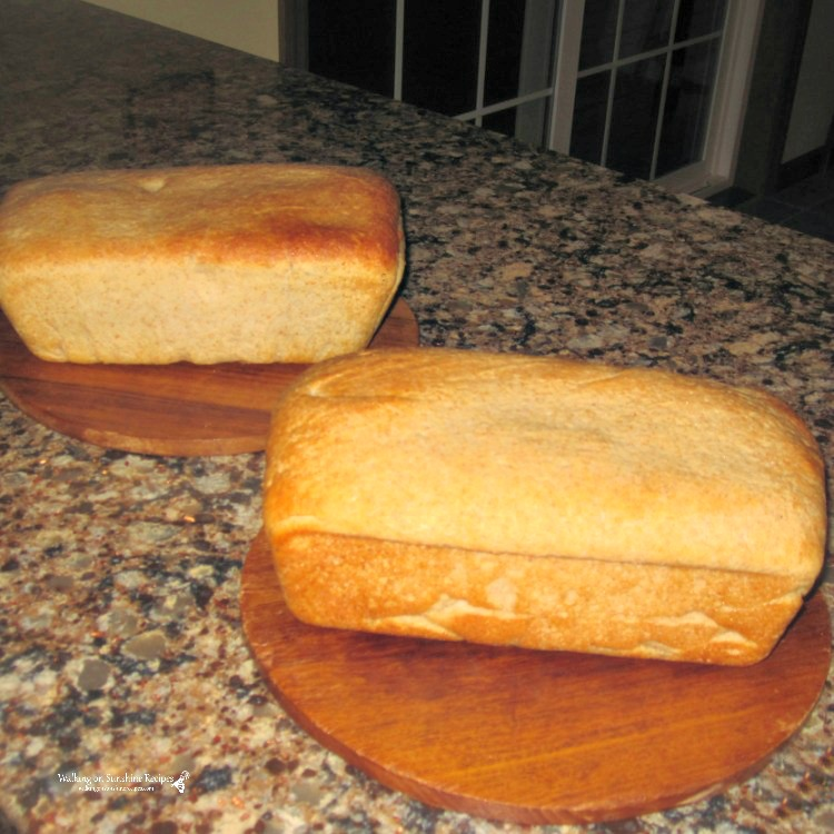 Homemade Honey Wheat Bread on Cutting Boards.
